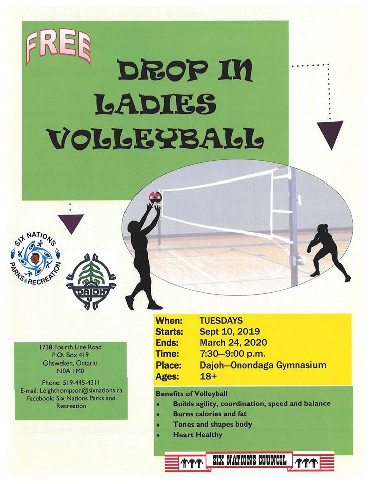 Drop In Ladies Volleyball poster