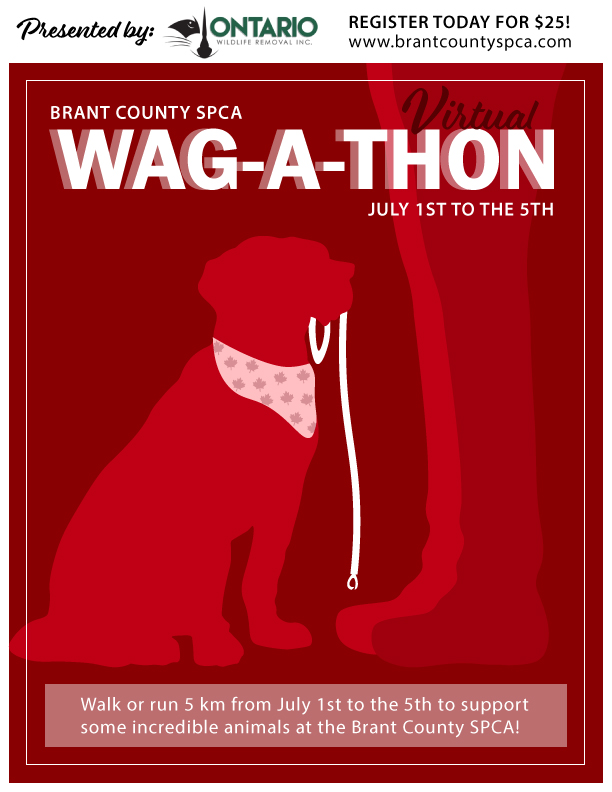 Wag-A-Thon poster